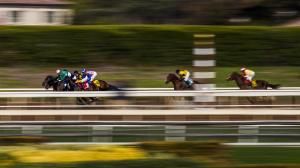 Five Questions to Be Answered in the 2018 San Felipe Stakes
