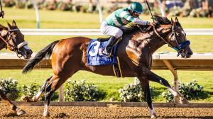 Breakthrough Win for Cistron in Bing Crosby Stakes