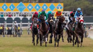 Dan's Double: Swinging for the Fences on Del Mar Turf