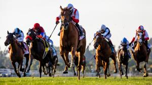 Betting Handle Steady Despite Challenges, Fewer Races in 2020