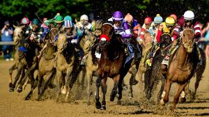 Catching Up with the 2016 Kentucky Derby Starters