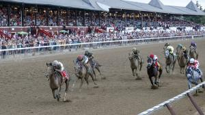Five Questions to be Answered in the 2019 Whitney Stakes