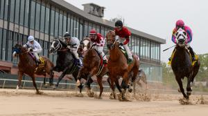 Dan's Double: Looking for a Price at Oaklawn