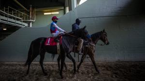 2021 Runhappy Santa Anita Derby at a Glance