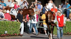 Belle's Best Bets: Gulfstream, Aqueduct Value Plays, NFL Wildcard Pick