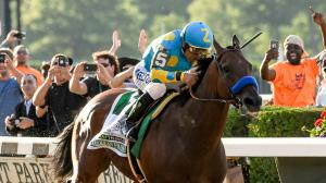 Something to Rally Behind: American Pharoah