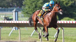 American Pharoah Passes Test at Monmouth