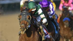Accelerate won his sixth race in seven 2018 starts on Saturday when he captured the Breeders' Cup Classic.