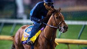 Five Questions to be Answered in the 2018 Breeders' Cup Classic