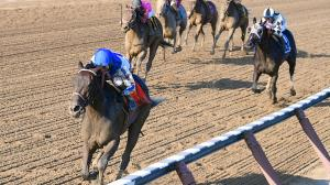 Road to the 2017 Breeders' Cup: Three Heating Up, Three Cooling Down