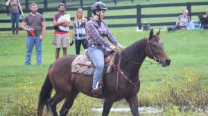 Warhorse Art Series Eager to Learn in Second Career