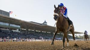 Bellafina is the expected favorite for this year's Longines Kentucky Oaks.