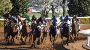 2019 Blue Grass Stakes at a Glance