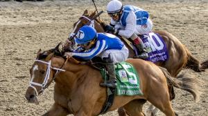By My Standards Rallies to 22-1 Upset in Louisiana Derby