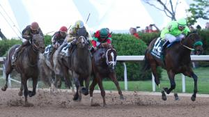 Could Conquest Mo Money Summon Mine That Bird Magic in Preakness?