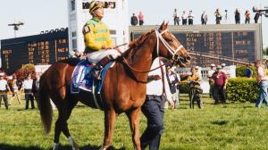 Charismatic and jockey Chris Antley after winning the 1999 Kentucky Derby.