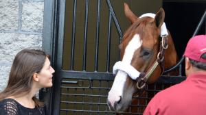 Kentucky Derby winner California Chrome is Taylor Made Farm's star resident.