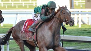 Code of Honor jumped into the top 10 this week after his win in the Fountain of Youth.