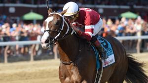 Copper Bullet All Business in Saratoga Special
