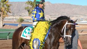Cutting Humor earned a place in the Kentucky Derby starting gate with his win in the Sunland Derby on March 24.