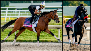 Three Longshots to Consider When Betting the Shoemaker Mile