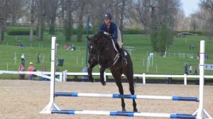 Lifelong Equestrian Isabela De Sousa Makes Splash with Retired Racehorses