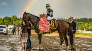 Diversify earned his second career Grade 1 win in the Whitney on Saturday at Saratoga.