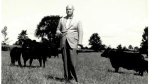 E. P. Taylor is regarded as one of the greatest Thoroughbred breeders of all time in North America.