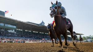 2018 Awesome Again Stakes by the Numbers