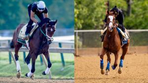 Bourbon War (left) and Improbable are among a field of 13 Preakness hopefuls.