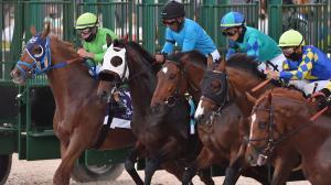 Byron King's Derby Dozen for March 24
