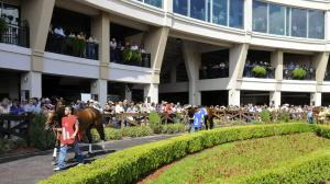 Five Questions to be Answered in the 2019 Risen Star Stakes