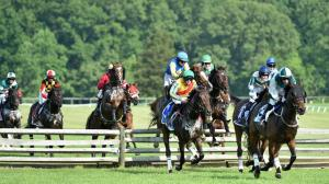 Racing at Fair Hill, site of Saturday's Fair Hill Races.