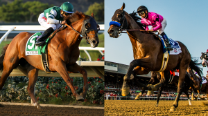 Five Questions to be Answered in 2018 Awesome Again Stakes