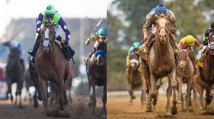 2018 Fountain of Youth Stakes Cheat Sheet