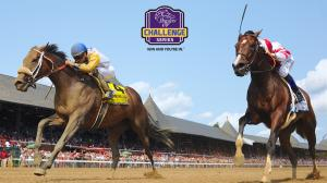 Getting to Know Forever Unbridled