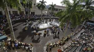 The paddock is a highlight of the Gulfstream Park grounds, which will host the Florida Derby this Saturday.