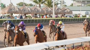 Racing at Gulfstream Park