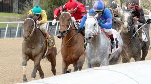 Determined Gray Attempt Holds on to Win Smarty Jones Stakes