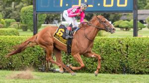 Got Stormy Punches Breeders' Cup Mile Ticket With Record-Setting Win