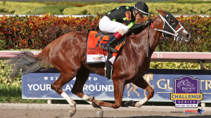 Stormy Embrace an Intriguing Filly and Mare Sprint Contender