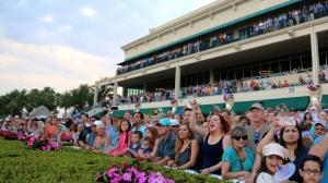 Taking a Stand Against Hidden Scroll in the 2019 Florida Derby