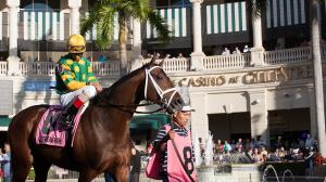 Your Guide to Visiting Gulfstream Park, a Horse Track-Shopping Mall Hybrid