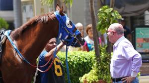 The all-time leading trainer in Venezuelan history, Antonio Sano's journey has brought him to South Florida for the Pegasus World Cup.