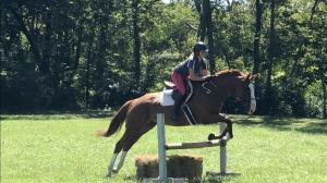 Thoroughbred Makeover Diary: Tapanista Renewing Her Trainer's Confidence