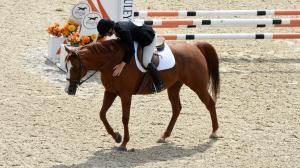 Bonnie Hutton, founder of After The Races, Discusses Handling and Training OTTBs