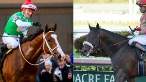 Maximus Mischief (left) and Mihos are two of the top contenders for Saturday's Holy Bull Stakes.