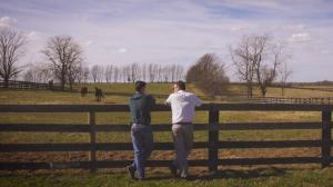 Q&A: Horse Country, an Authentic Bluegrass Experience