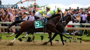 2021 Preakness Stakes by the Numbers