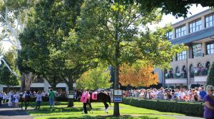 Dan's Double: Grass Could Be Greener at Keeneland